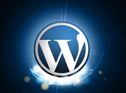 How to Host Your Own Player and Videos on Your WordPress Blog