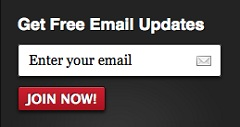 How to Customize MailChimp Email Signup Forms WordPress