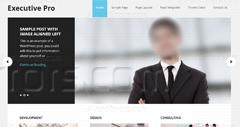 How to Customize the Genesis Executive Pro Theme