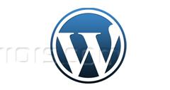 Manually Change the Default WordPress Logo on Login Page