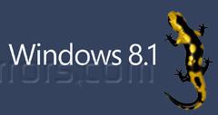 How to Dual Boot Windows 8.1 and Ubuntu 13.10