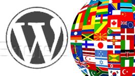 Translate WordPress Theme into any Language