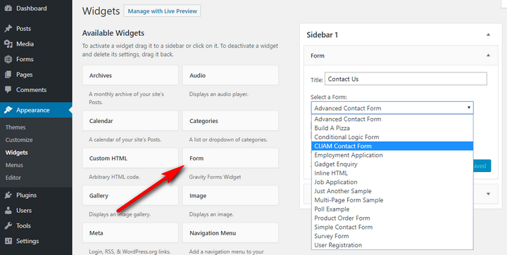 How to Create Feature-rich Forms in WordPress - AvoidErrors
